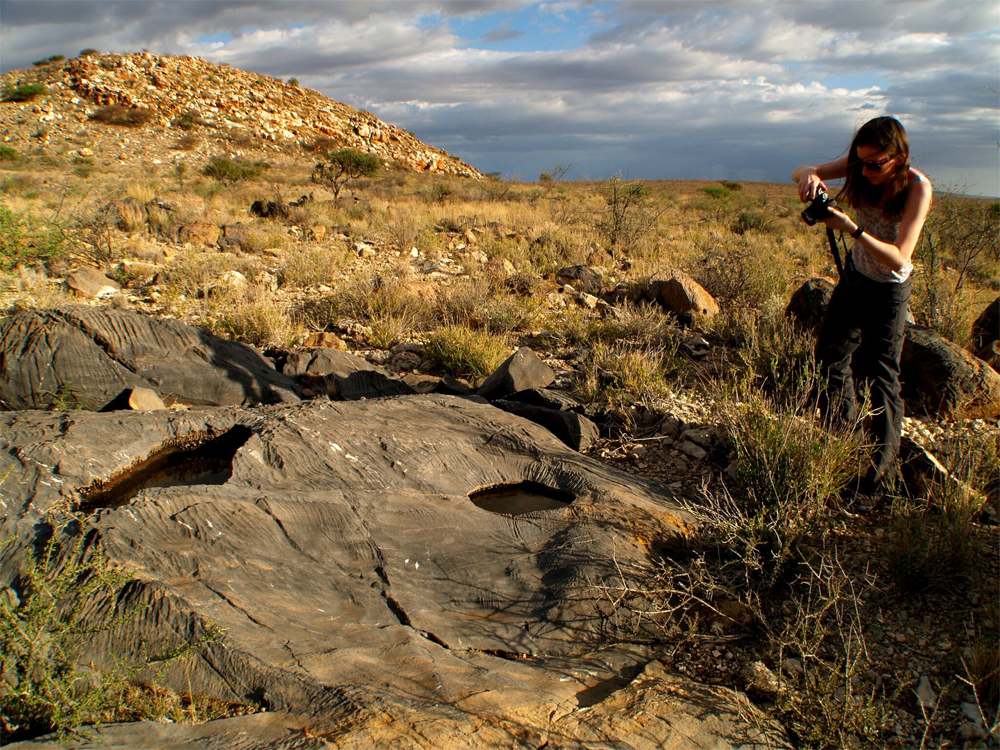 Namibia: Study provides strongest evidence oxygen levels were key to early animal evolution