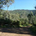 Int east of Old Geehi Hut (294262)