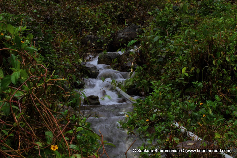 A tropical mountain stream near Honey Valley in Coorg