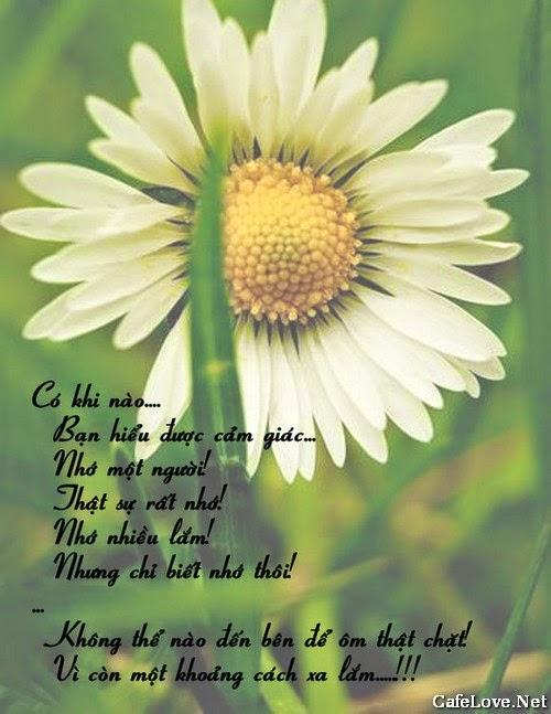 Ảnh tình yêu về nỗi nhớ da diết