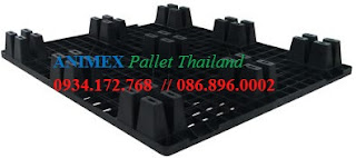 Pallet Thailand Dino NLV 1012 UT