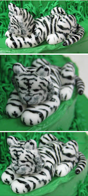 Jungle Animal Cake - Close-up Views of White Tiger