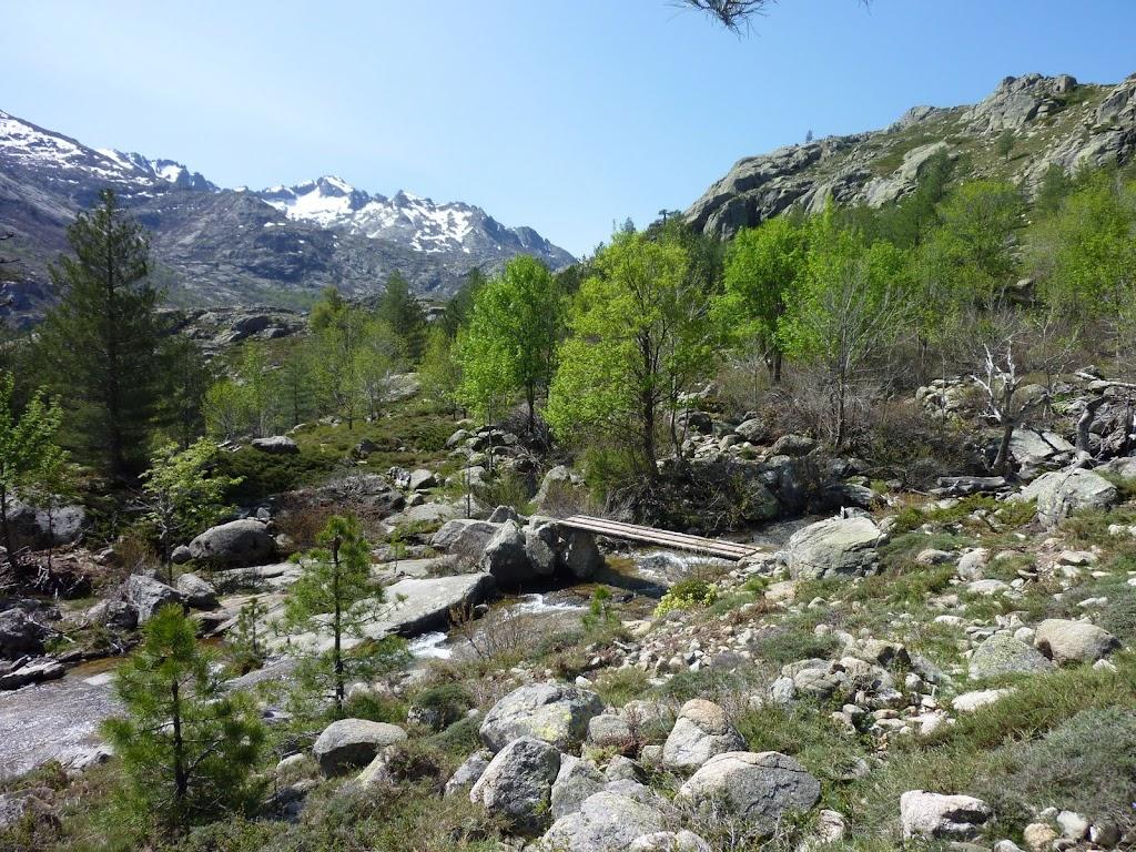 ... et on trouve: cette passerelle est bien sur le sentier du col de Capizzolu