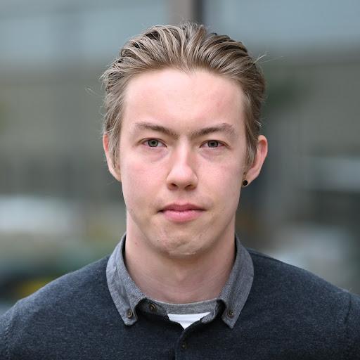 Дмитрий Соколов picture