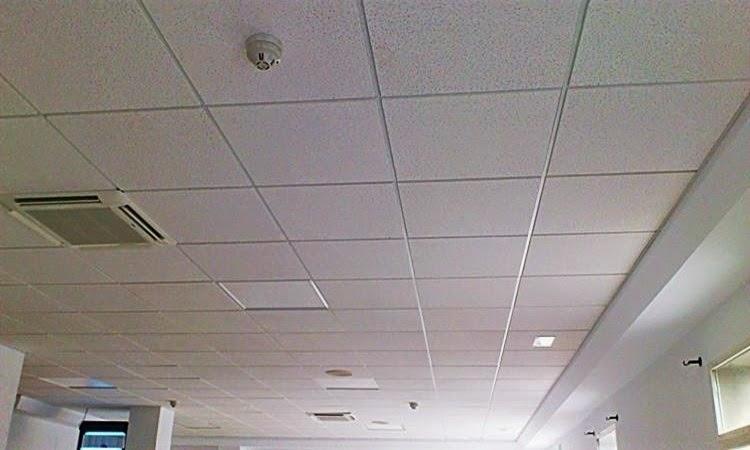 Falsos techos escayolista y pladurista fermin vaamonde - Techos de escayola modernos ...