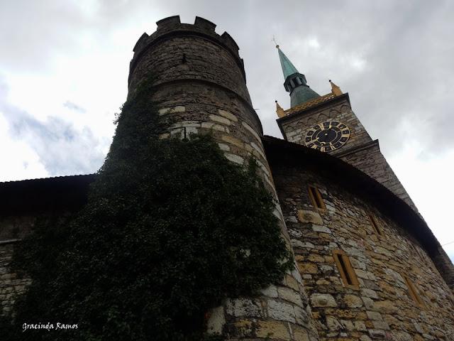 passeando - Passeando pela Suíça - 2012 - Página 14 DSC05157