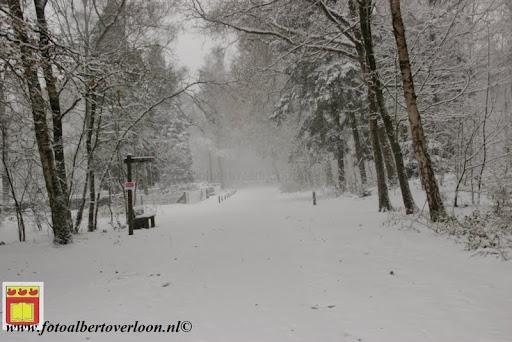 eerste sneeuwval in overloon 07-12-2012  (10).JPG