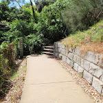Path behind Lady Bay (255542)