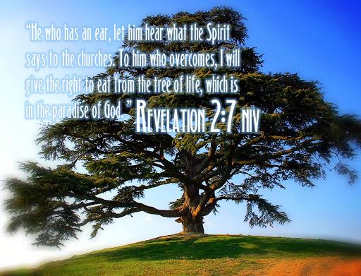 Revelation-2:7