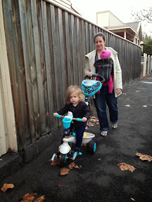 Review of Smart-Trike