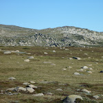 Australian alpine country (265592)