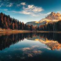 Profile picture of omkar trimale