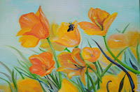 Callifornia yellow golden poppies 30*40
