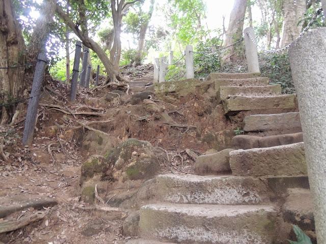 Je crois que je développe une relation malsaine avec les escaliers.
