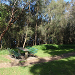Salt Pan Creek picnic area (77365)