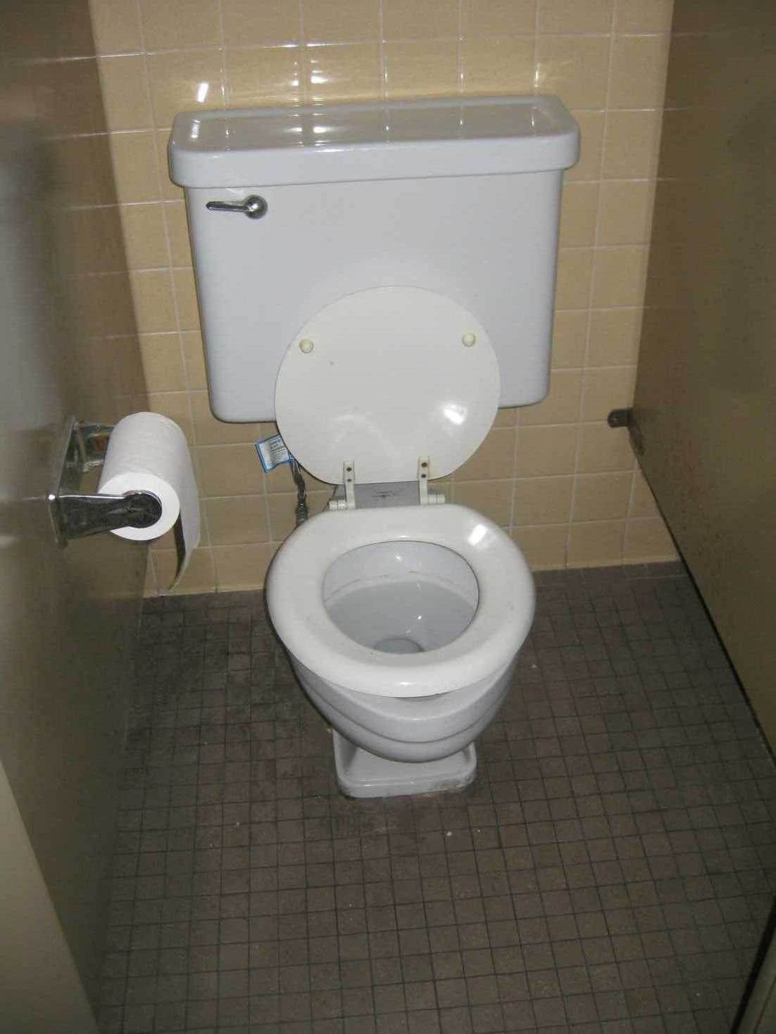 Gt Dual Flush Toilets They Are A Big Deal Operation Church