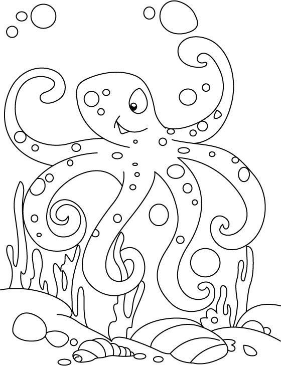 Okul öncesi Eğitim Deniz Canlıları Boyama Sayfaları 1
