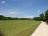 Schöner Weg im NIddapark