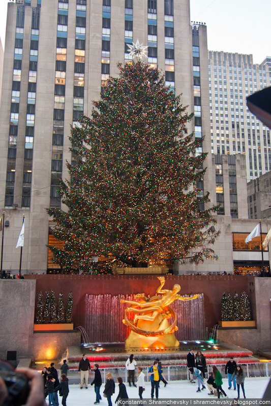 USA New York City Christmas Rockefeller center Tree США Нью Йорк Город Рождество Рокфеллер Центр Елка