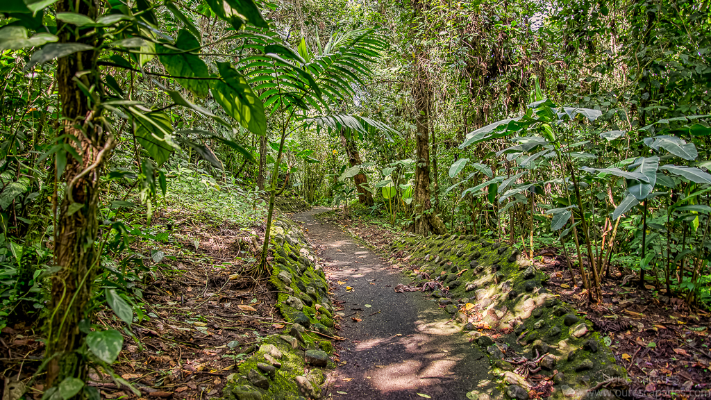Trail near the Arenal Volcano