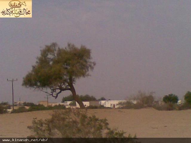 بصور ديار قبائل يعلى الكنانية t6314-30.png