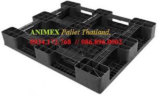 Pallet nhựa Thái Lan lưu kho