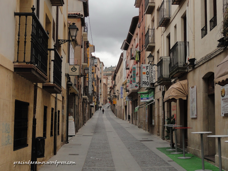 passeando - Passeando pelo norte de Espanha - A Crónica - Página 3 DSC05160