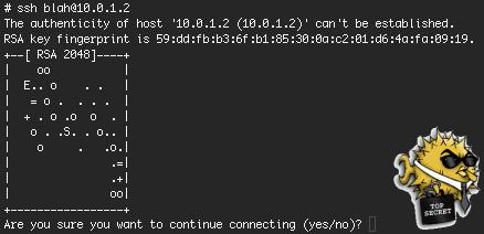 Ilustrasi SSH Terminal Emulator