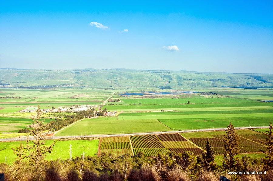 Поля в верхней Галилеи.