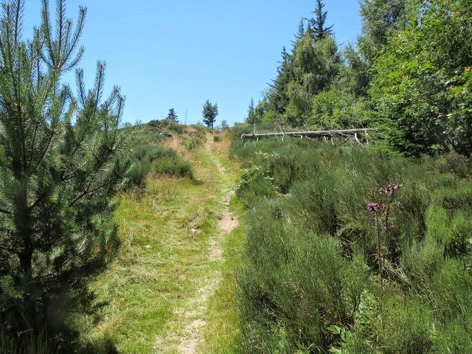 [CR] Dinotrip en mode DUL, grande traversée des Monts d'Ardèche IMG_0429