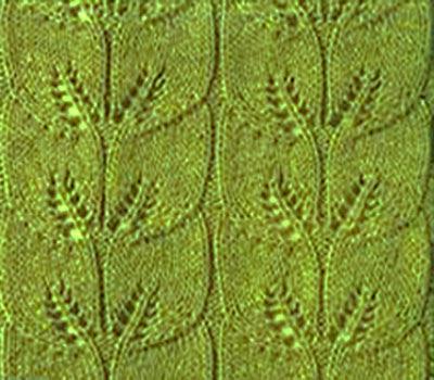 орнамент из листьев