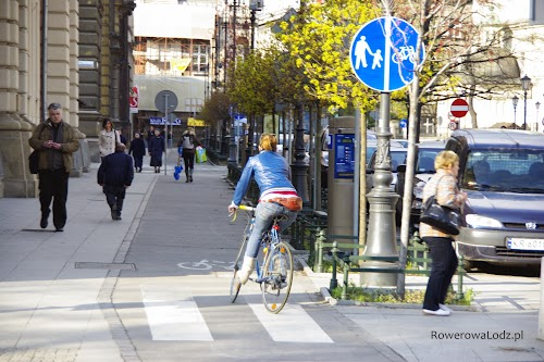 Asfaltowa droga dla rowerów