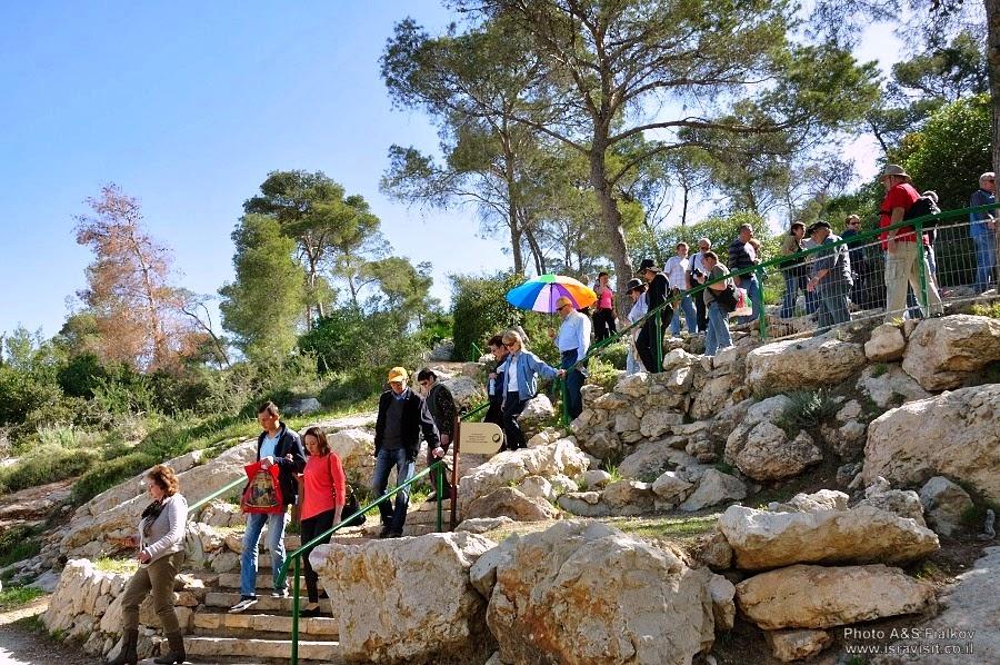 В заповеднике Авшалом, спуск к сталактитовой пещере Сорек. Экскурсия Монастыри в Иудейских горах и сталактитовая пещера Сорек, гид Светлана Фиалкова.