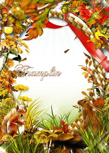 Осенняя рамка для Photoshop – На пеньке сидят гурьбой рыжие опята