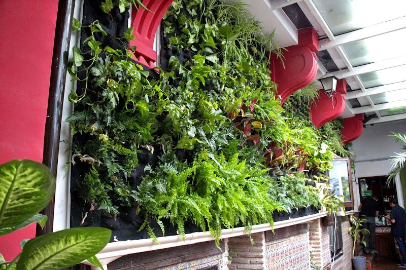 Jardín vertical en Toledo