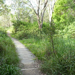 Track close to the foreshore of Lake Macquarie (389642)