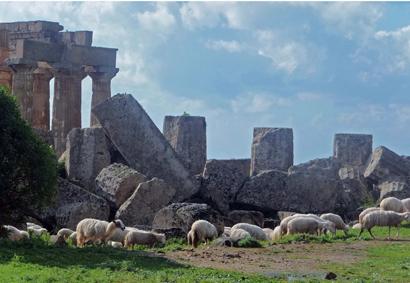 Schafherde vor antiker Kulisse