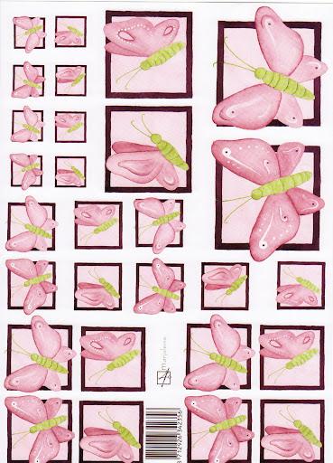 vlinder rose.jpg