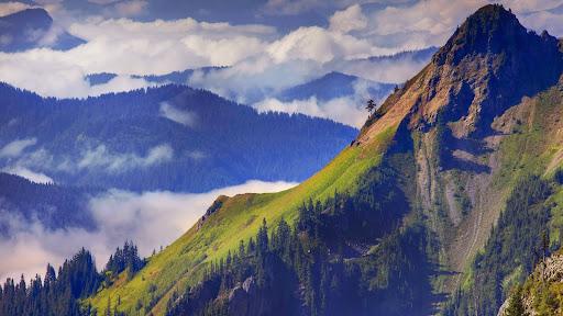 View From Top of Pinnacle Peak, Mount Rainer, Washington.jpg