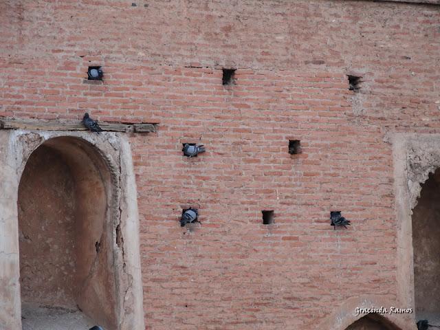 Marrocos 2012 - O regresso! - Página 4 DSC05086