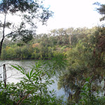Nepean River (146715)
