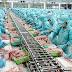 Đơn hàng chế biến thực phẩm cần 9 nam và 15 nữ thực tập sinh làm việc tại Fukushima Nhật Bản tháng 03/2017
