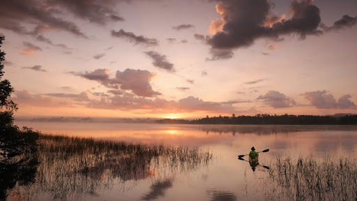 Kayaking Birch Lake, Minnesota.jpg
