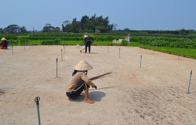 Bà con nông dân huyện đảo Lý Sơn rất lo lắng, đang làm ruộng chuẩn bị xuống giống cho mùa tỏi sắp tới