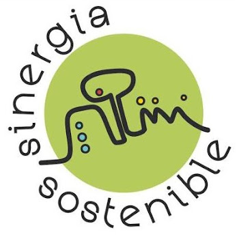Who is Sinergia Sostenible?
