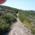Track near La Perouse (309803)