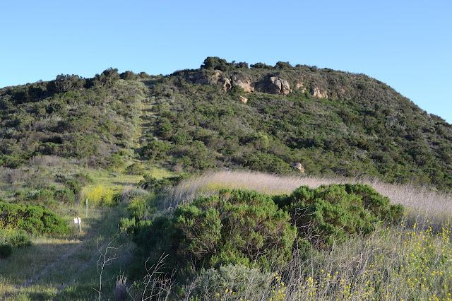 short grass going straight up a hill