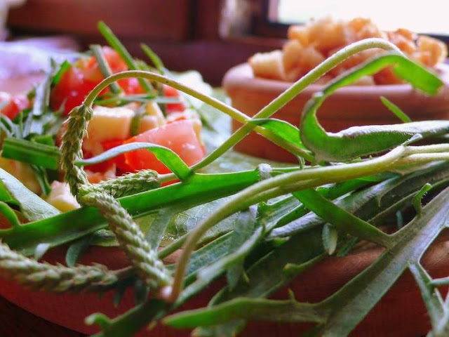 Салат из кислицы