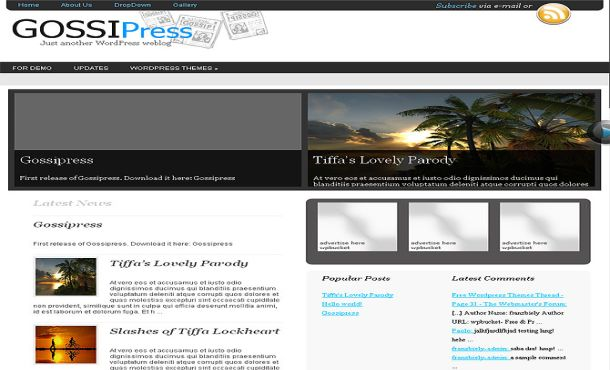 Free Black White Gray Jquery WordPress Theme