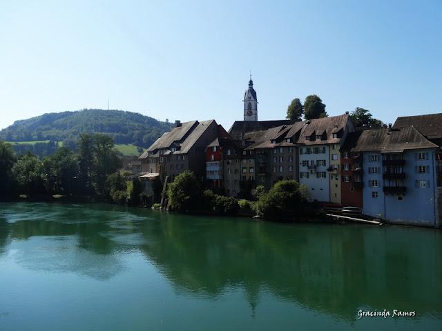 passeando - Passeando pela Suíça - 2012 - Página 14 DSC04902